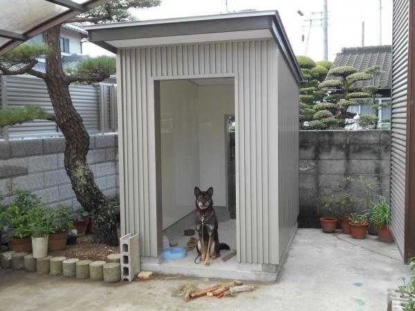 ココちゃんのお家 (犬)